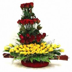 Teddy with chocolate