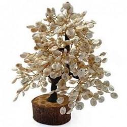 Mixed Fruit Cake - 1Kg