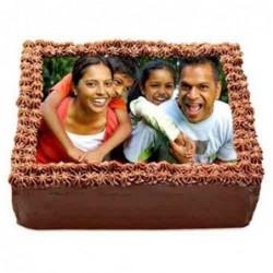 3-Feet teddy