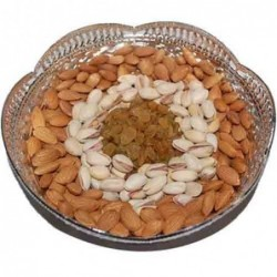 8 Assorted Gerberas