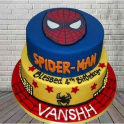 Cricket Theme cake 2kg