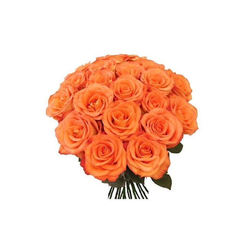 12 Orange Rose Bunch