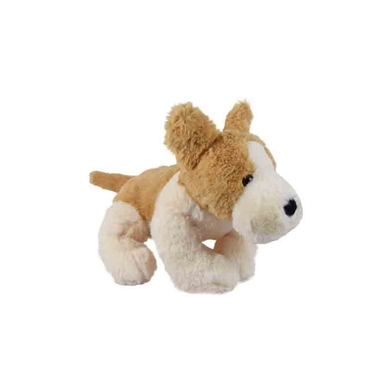Lord Vishnu with Laxmi